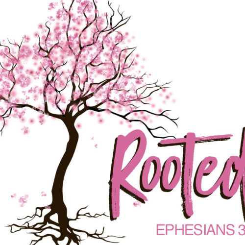 2017 ROOTED